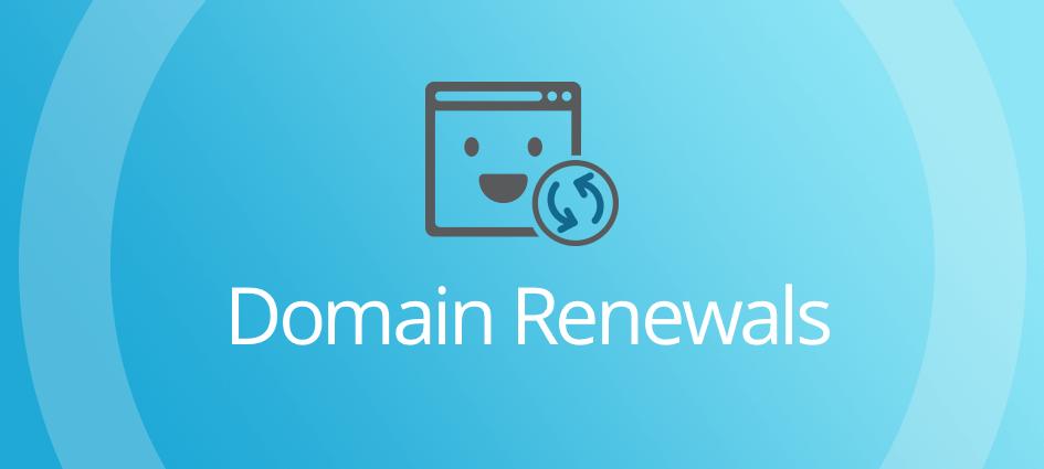 Domain Renewals